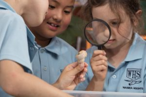 kids using magnifying glass2